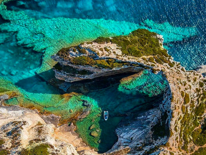 Paxos and Antipaxos